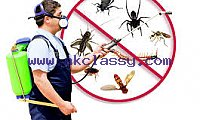 AL MASAH AL BRAQAH PEST CONTROL & CLEANING SERVICES