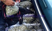 I Got High Grade Buds Available For Sales #5305120071
