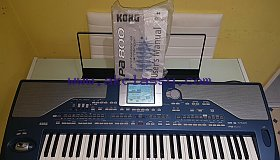 Korg PA800 61-key Professional Arranger Keyboard