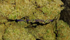 ORDER HIGH GRADE MEDICAL/RECREATIONAL MARIJUANA/CARTS/SHATTER/OIL & MORE.TRACKING NUMBERS AVAILABLE