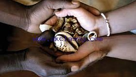 Spells to get back your ex back call+256777422022
