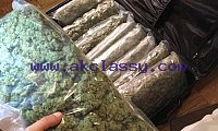HIGH QUALITY KUSH FOR SALE AT LOW COST
