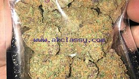 GREEN CRACK, WHITE WIDOW ANS GRAND DADDY PURPLE AVAILABLE