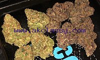 Units of high grade kush available