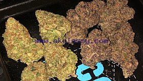 TOP SHELF OG STRAINS AVAILABLE