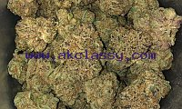 HIGH GRADE INDICA,HYBRID & SATIVA STRAINS