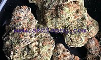 ORDER HIGH GRADE MARIJUANA WITH EXPRESS DELIVERY