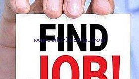 job_portal_merchant_account_grid.jpg