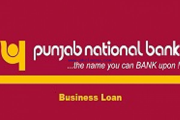 Punjab National Bank Business Loan