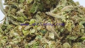 WE ARE WHOLESALE/RETAIL SUPPLIER OF MEDICAL MARIJUANA