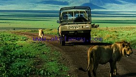 3 days ngorongoro crater safari