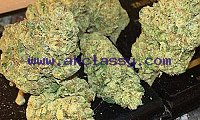 TOP QUALITY BUDS…?? INDOORS\OUTDOORS HARD NUG...SERIOUSE INQUIRIES...