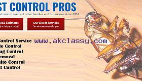 Pest control, termite control in Dallas, Texas