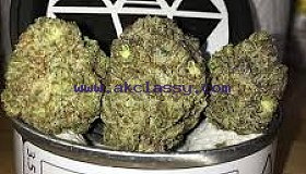 Space Monkey Meds Cali Weed for sale online calitinshop.com