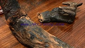 Buy  Ancient Egyptian High Priest mummy foot and hand!