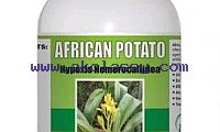 Men's Herbal Clinic International Call +27710732372 South Africa