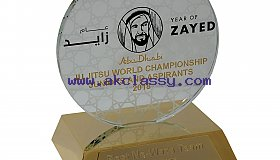Customized Crystal Trophy For Hospitals in Dubai