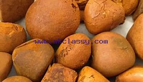 Wholesale Ox Gallstone supplier