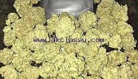 Medical Marijuana For Sale Online UK gusherweed.com