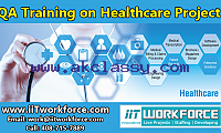 QA Real-time Project Workshop experience on Healthcare Domain by IIT Workforce