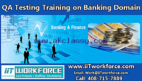 QA Real-time Project Workshop on Banking Domain from IIT Workforce