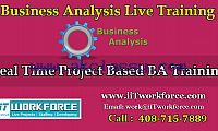 Business Analyst Real-time Project Workshop from iiT Workforce