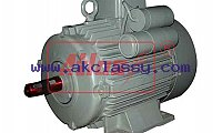 Inline Geared Brake Motor, Dual Voltage Motor