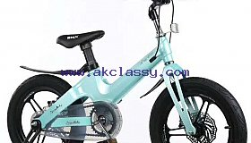 China Mountain bike hot sale