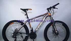 Mountain bike hot sale