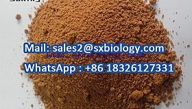 High Quality 4-Amino-3, 5-Dichloroacetophenone CAS 37148-48-4