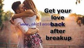 LOVE MARRIAGE Expert baba ji +91-8872856454 in USA