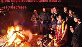 Love Marriage Problem Solution Aghori BaBa JI +91-7508576634