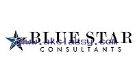 Enjoy a Debt Free Life With Blue Star Consultants