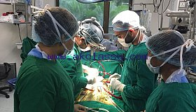 Get Best Heart Surgery in India – Wockhardt Hospitals International