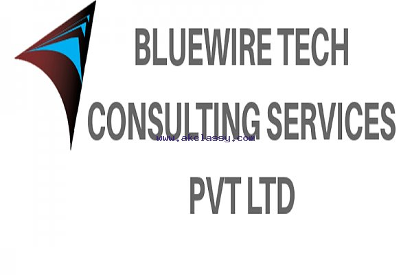 Bluewire Tech BPO service