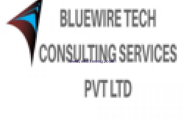 Bluewire Tech BPO service