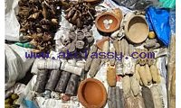 Powerful Traditional doctor / Healer +27639233909 PSYCHIC READER fortune teller in Johannesburg Lenasia Alexandra