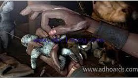 BRING BACK LOST LOVER IN 24 HOURS +27639233909 / SAVE YOUR MARRIAGE USA SWAZILAND LESOTHO NAMIBIA