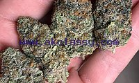 top quality medical marijuana and cannabis oil for delivery