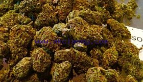 BUY TOP GRADE MEDICAL MARIJUANA ONLINE CALL AT +1(720)663-0187