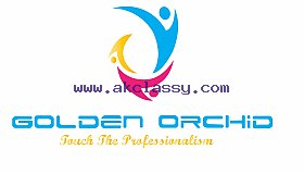 golden-orchid-placement-services-narol-ahmedabad-placement-services-candidate--q4cpk_grid.jpg