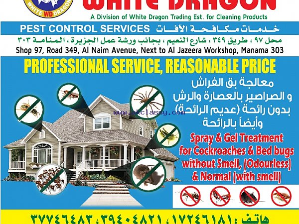 We don't charge too little, why? (White Dragon Pest Control)