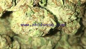 Grade A+ Weed