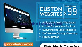 Build Professional Business website