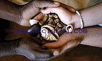 lost love spells caster in +27603651322 South Africa Johannesburg,UK,USA