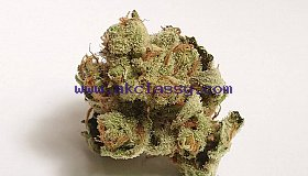 top  marijuana
