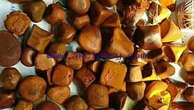 Cow /Ox Gallstones avaialable