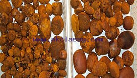 Cow/ Ox Gallstones
