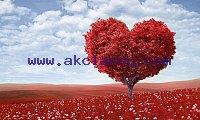 Wazifa For Love - Maulana Haider Ali